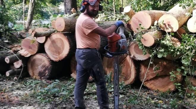 Luigi Viviani morto in incidente sul lavoro a Camporgiano