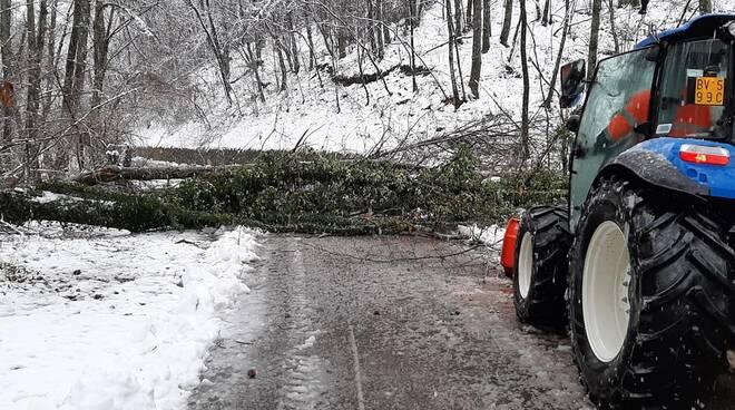 Neve alberi caduti in strada Garfagnana