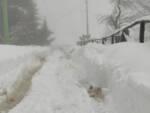 Neve Bagni di Lucca