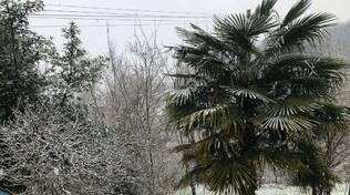 neve in Valle del Serchio