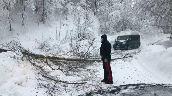 Nevicate all'Abetone