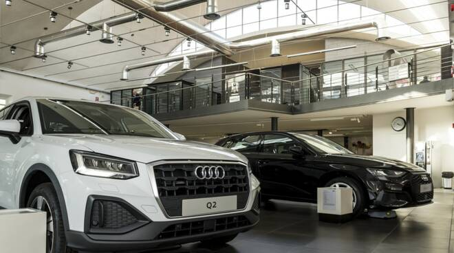 audi center terigi diesel