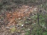 Maxi discarica lungo la provinciale Sp 3 Bientina Altopascio, ripulito l'Argine dei Prigionieri
