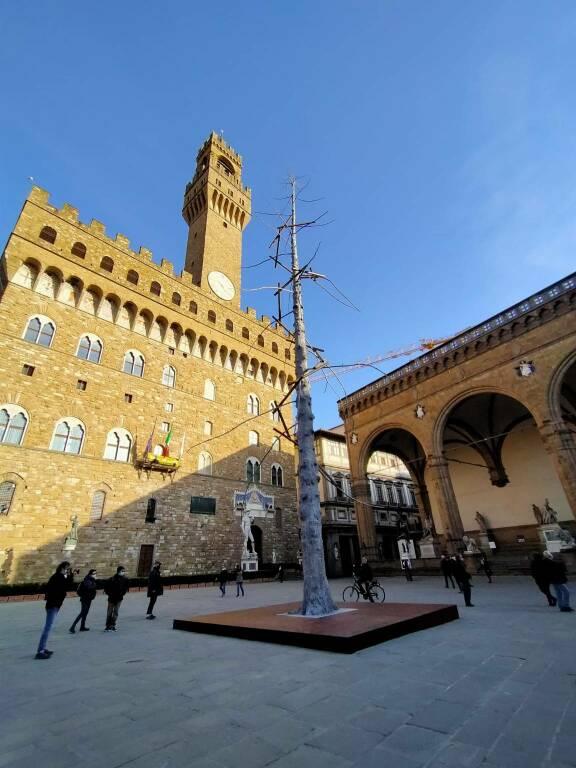 Albero Penone inaugurazione piazza della Signoria