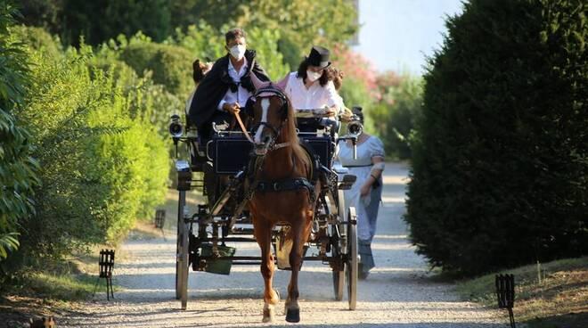 Pietro Osenga con carrozza e cavalli