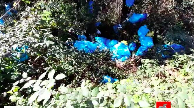 rifiuti fototrappole a Pietrasanta