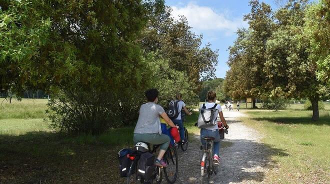 turismo sostenibile parco migliarino