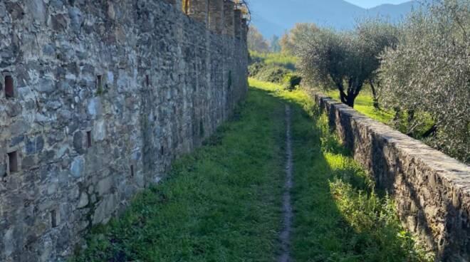 Capannori in Redola Giordano Del Chiaro