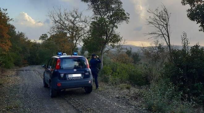 carabinieri forestali pisa