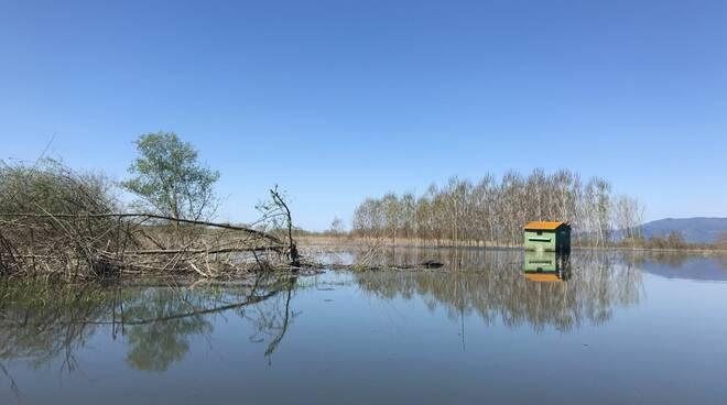 Lago di sibolla variazione tracciato via francigena