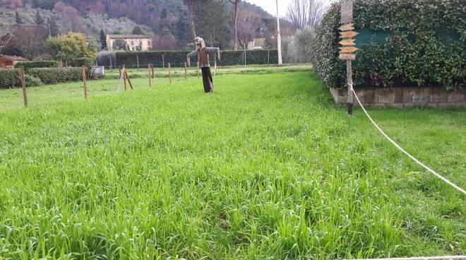 orto urbano Capannori riqualificazione Community Garden Guamo