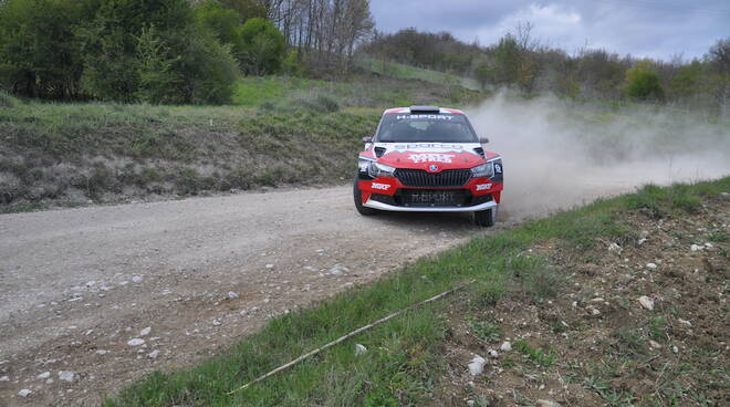 Paolo Andreucci Rally Terra Mrf Tyres