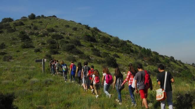 Passeggiata sul Monte Pisano