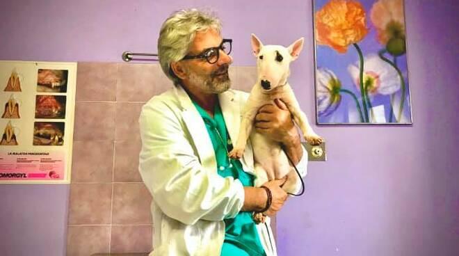 veterinario bianchi