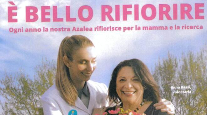 azalea Airc Camporgiano iniziativa