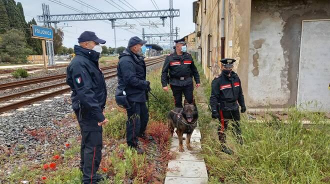 cani antidroga carabinieri