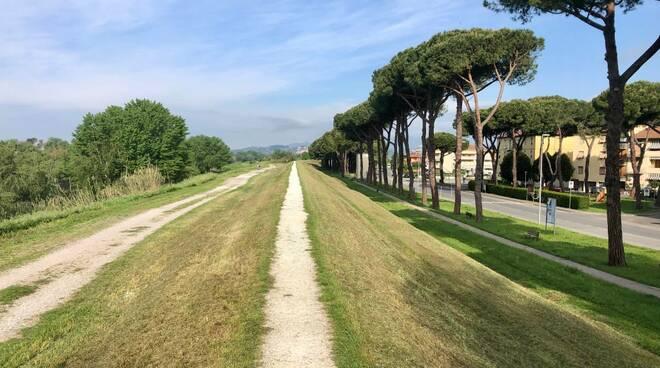 Parco fluviale Castelfranco di Sotto