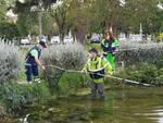 tartarughe recupero Livorno