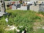 Toringo cimitero erba alta
