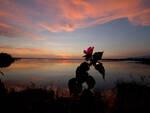 tramonto Oasi Lipu Massaciuccoli