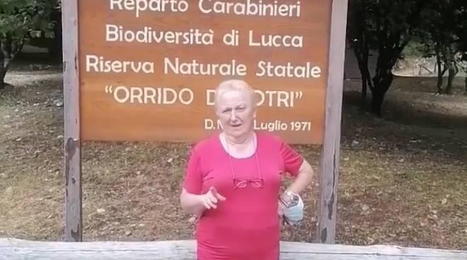 Annamaria Togneri Orrido di Botri