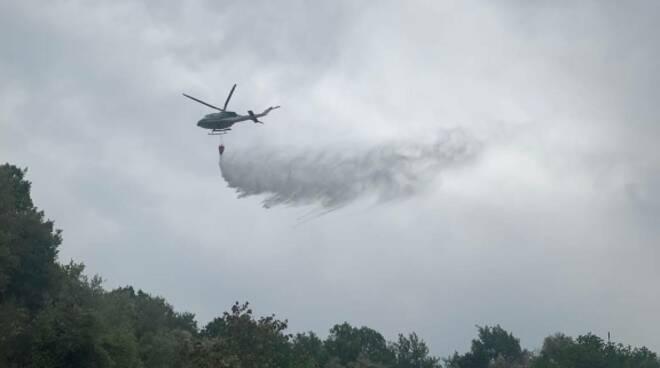 incendio oliveti e bosco ad Arezzo