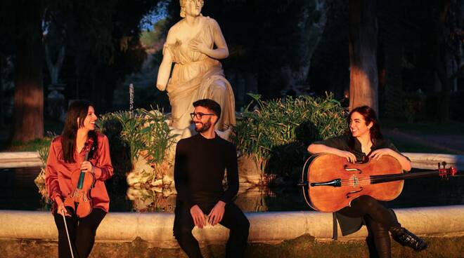 Aeonium Trio Chiostro di Santa Caterina
