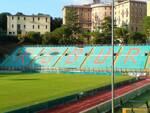 curva Siena Calcio