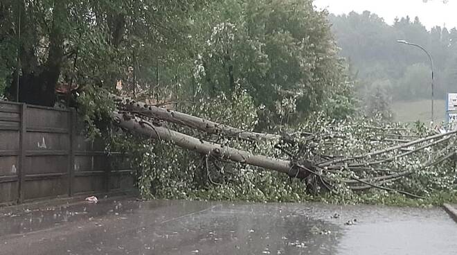 alberi abbattuti dal maltempo in garfagnana