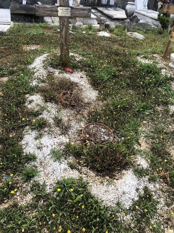 cimitero seravezza abbandono