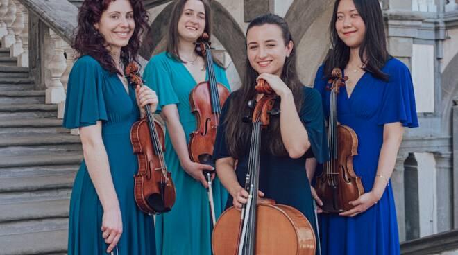 Dulce in Corde quartetto musica