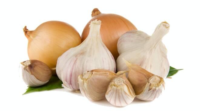 Fiera dell'aglio e delle cipolle Borgo a Mozzano