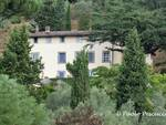 Lucca curiosa
