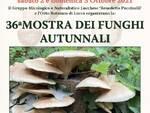 mostra funghi orto botanico