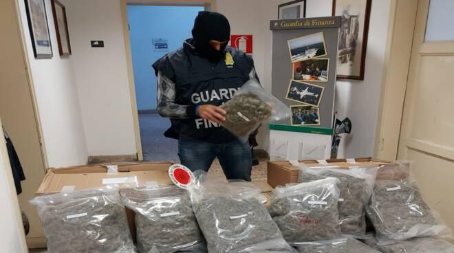 sequestro marijuana Sardegna Guardia di Finanza Livorno