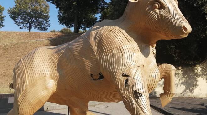 stata toro Cartasia vandali danni