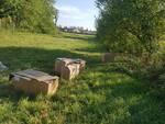 animali abbandonati in scatole sigillate a san pierino di fucecchio