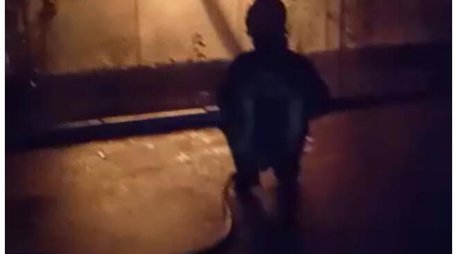 incendio a pieve fosciana