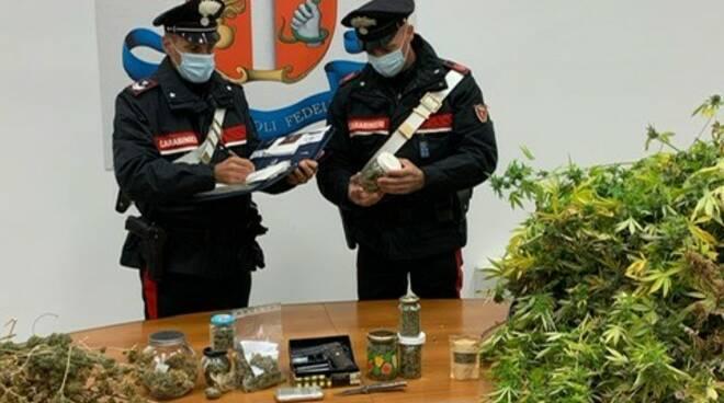 Supermerket della droga in casa: arrestato un 60enne di Marina di Massa