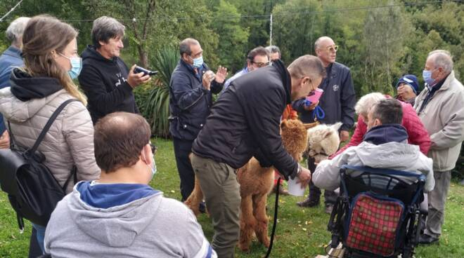 visita Gvs Barga alpaca San Romano